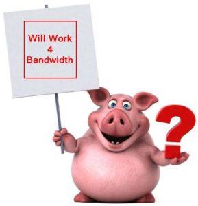 bandwidth hog